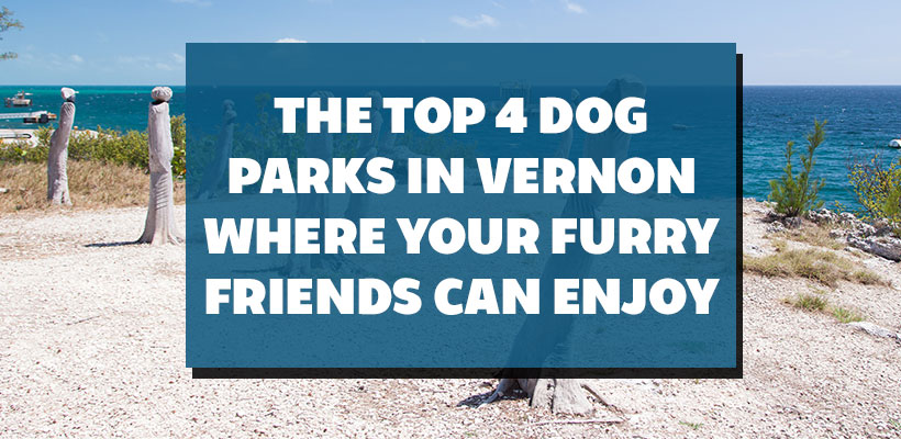 The Top 4 Dog Parks In Vernon Where Your Furry Friends Can Enjoy